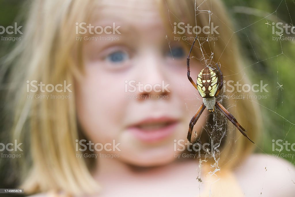 Fear of Spiders! stock photo