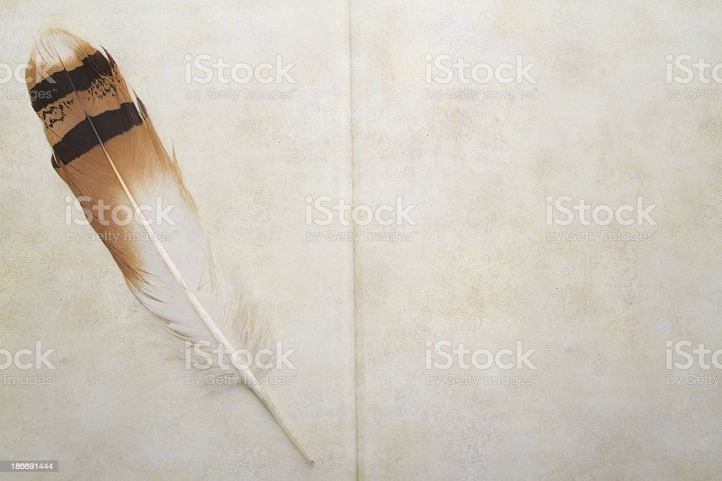 Feather and antique book royalty-free stock photo