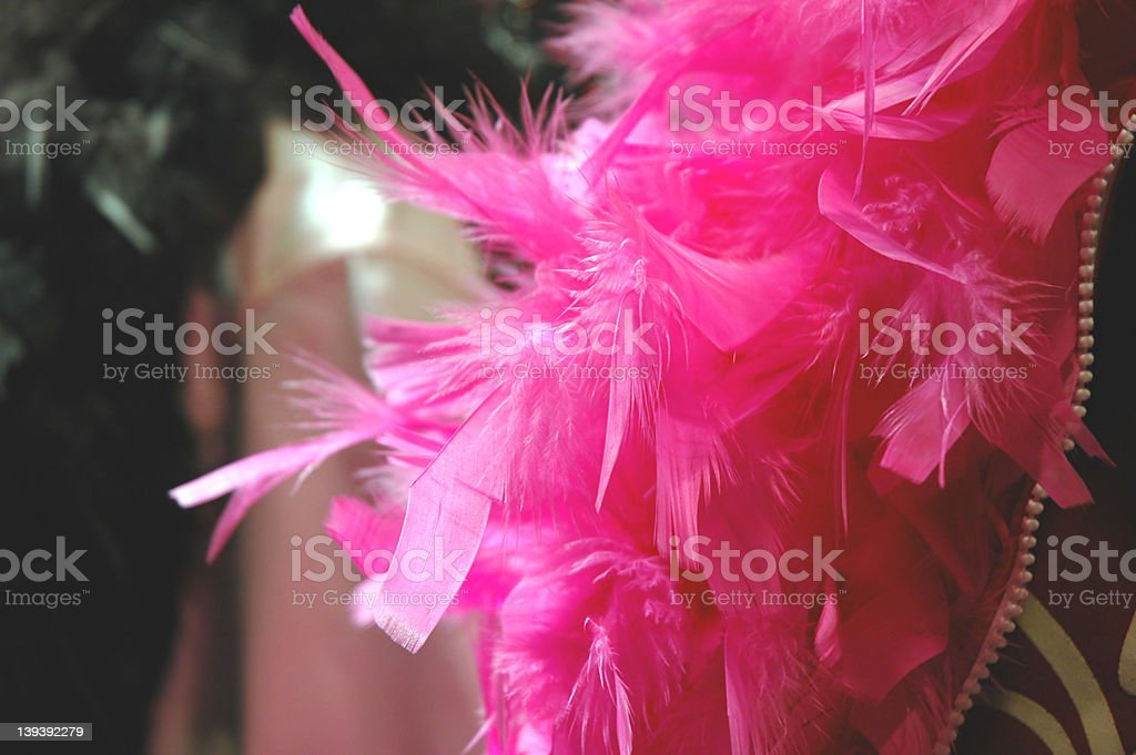 Feather Boa 1 stock photo
