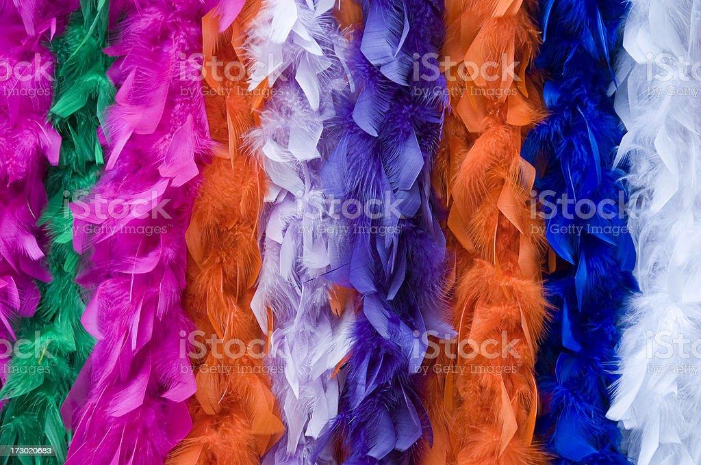 Feather Boas royalty-free stock photo