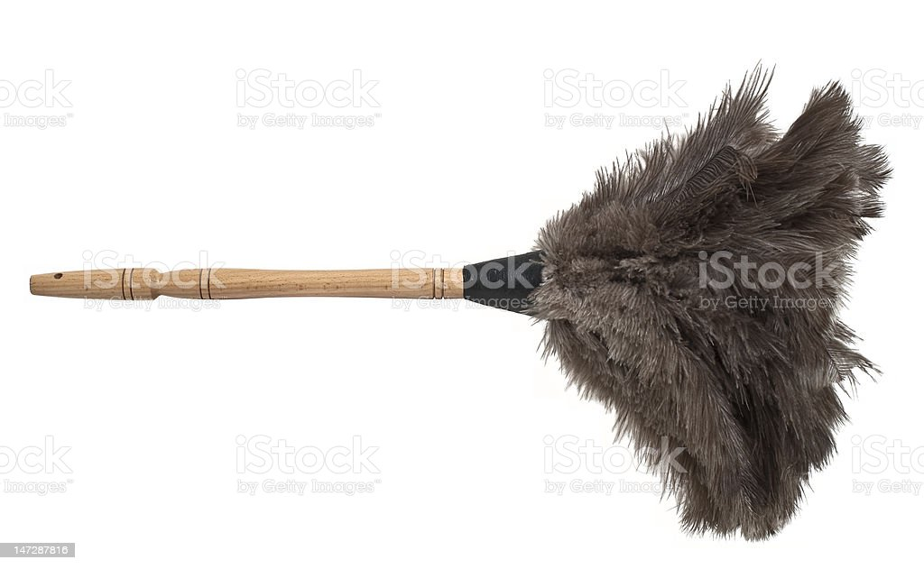 Feather duster isolated stock photo