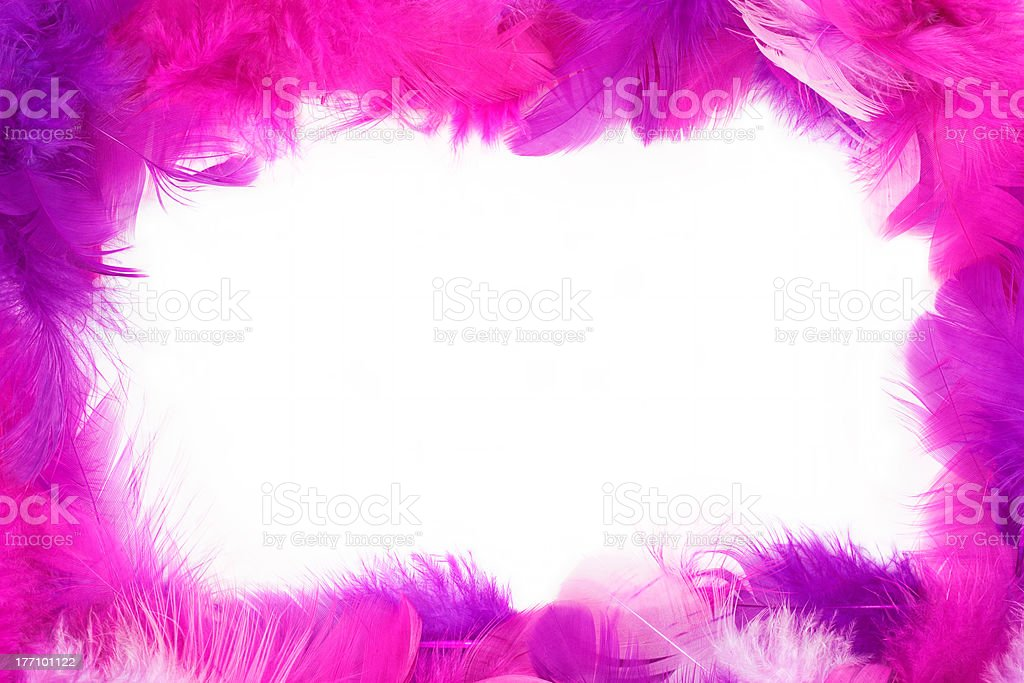 Feather frame stock photo