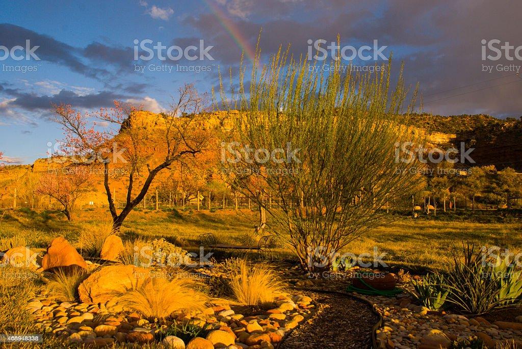 Feather Grasses Rock Garden Rainbow over South Mesa Rockville Utah stock photo