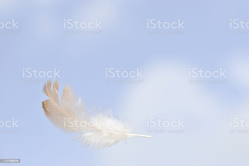 Feather in air royalty-free stock photo