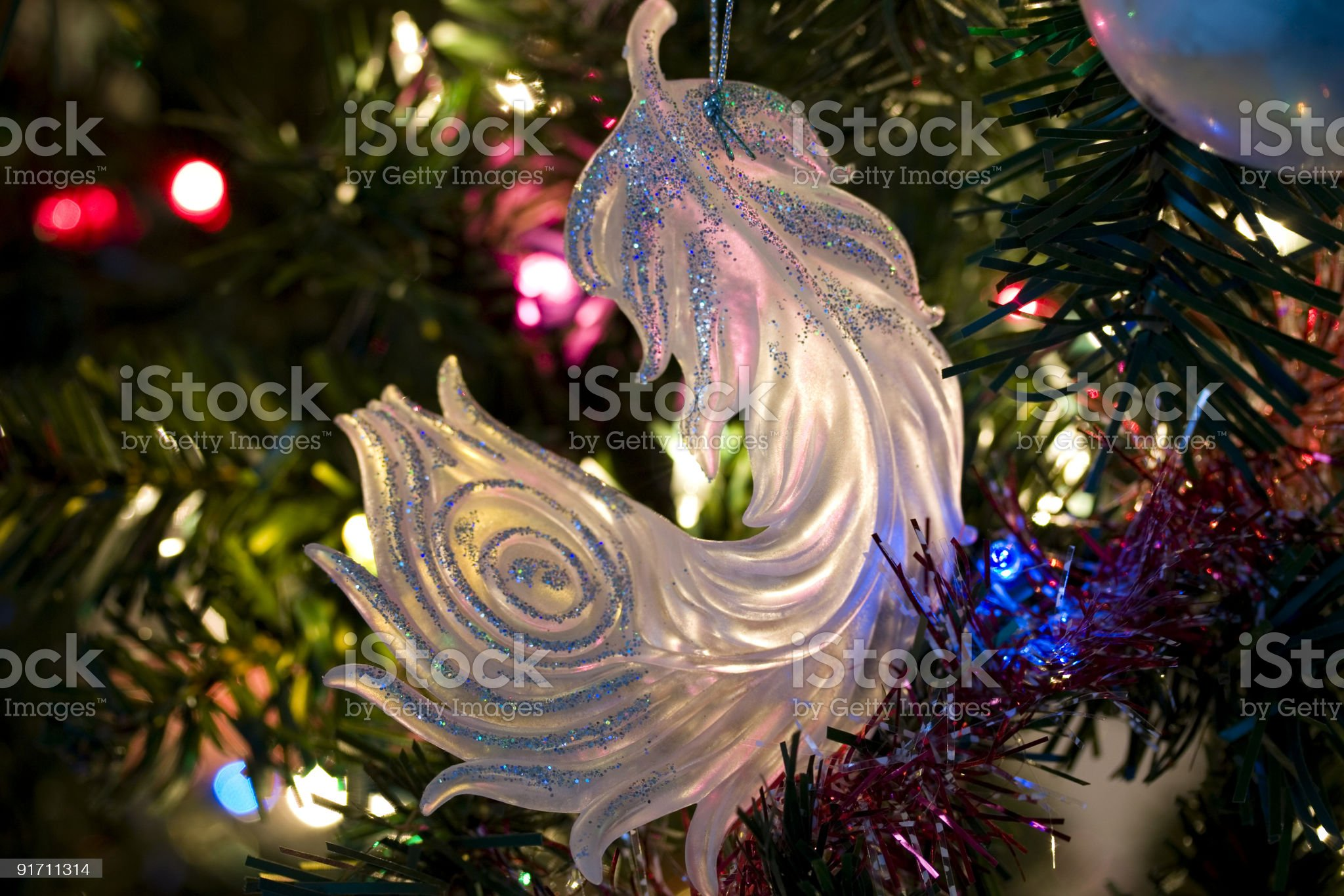 Feather Ornament royalty-free stock photo