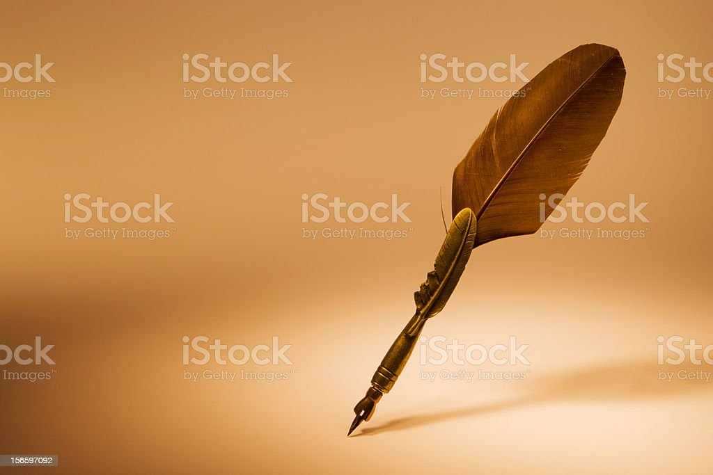 Feather XXL royalty-free stock photo