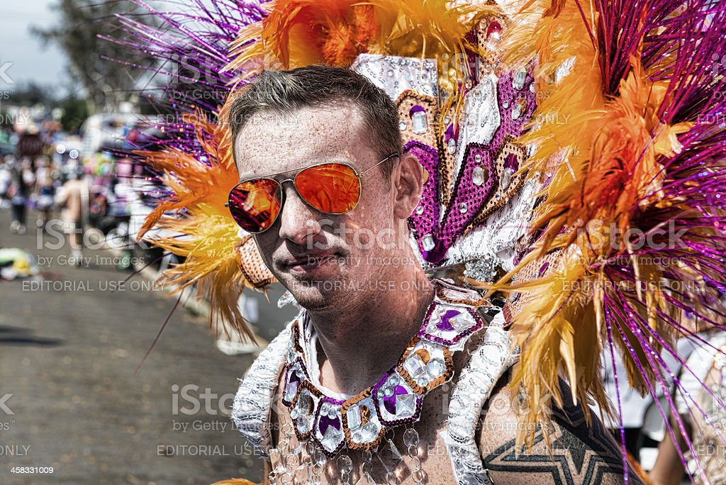 Feathers and Pride royalty-free stock photo