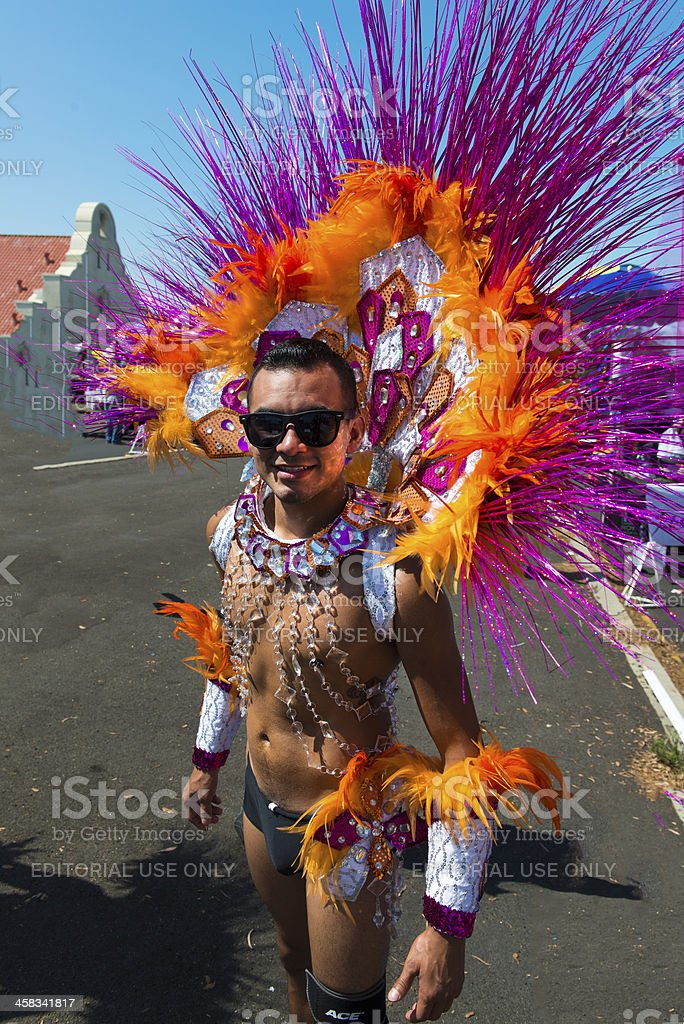 Feathers and sequins royalty-free stock photo