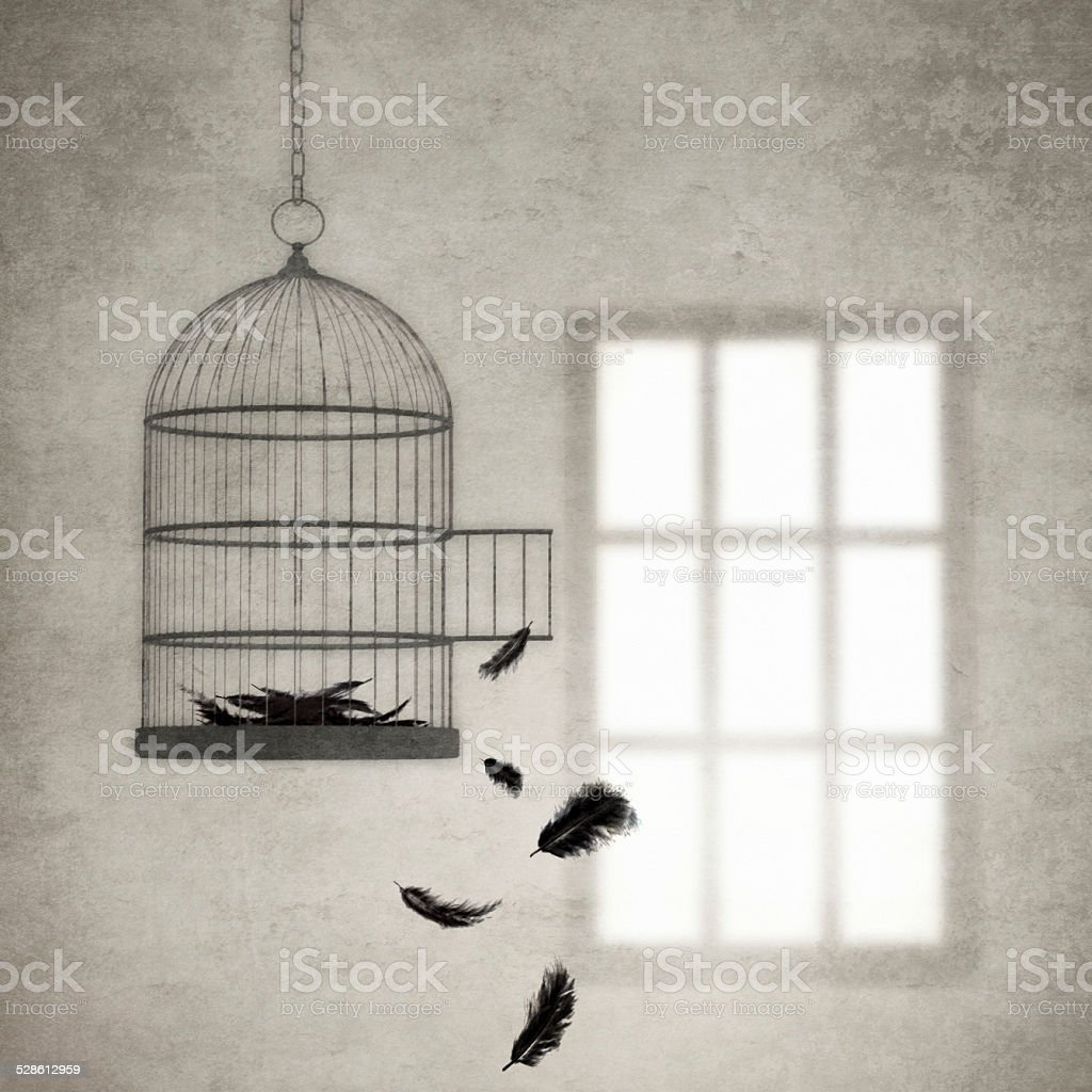 Feathers falling from an empty birdcage stock photo