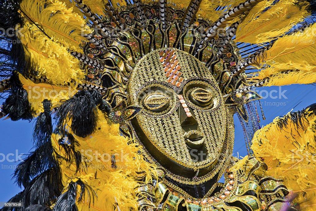 feathery carnival mask stock photo