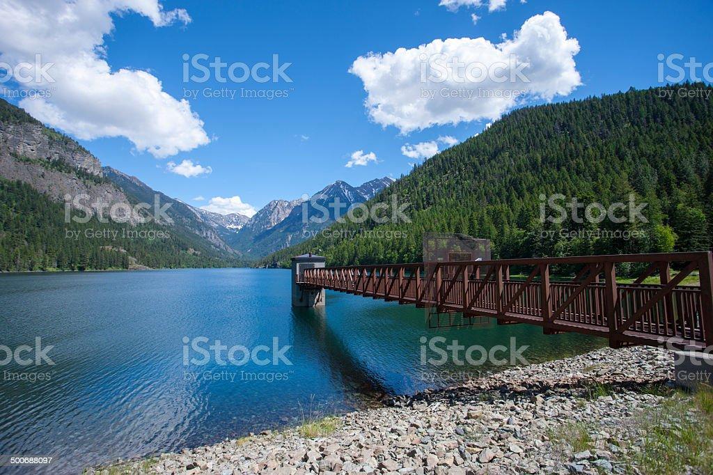 Feature at Lake MacDonald. stock photo