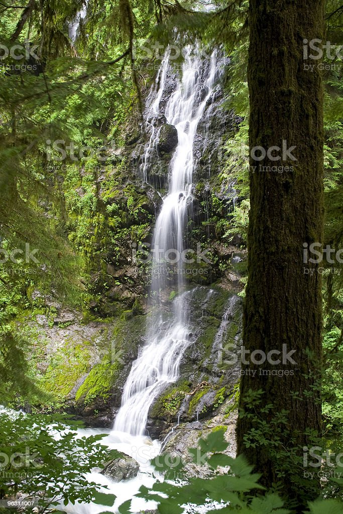 Feature Show Falls royalty-free stock photo