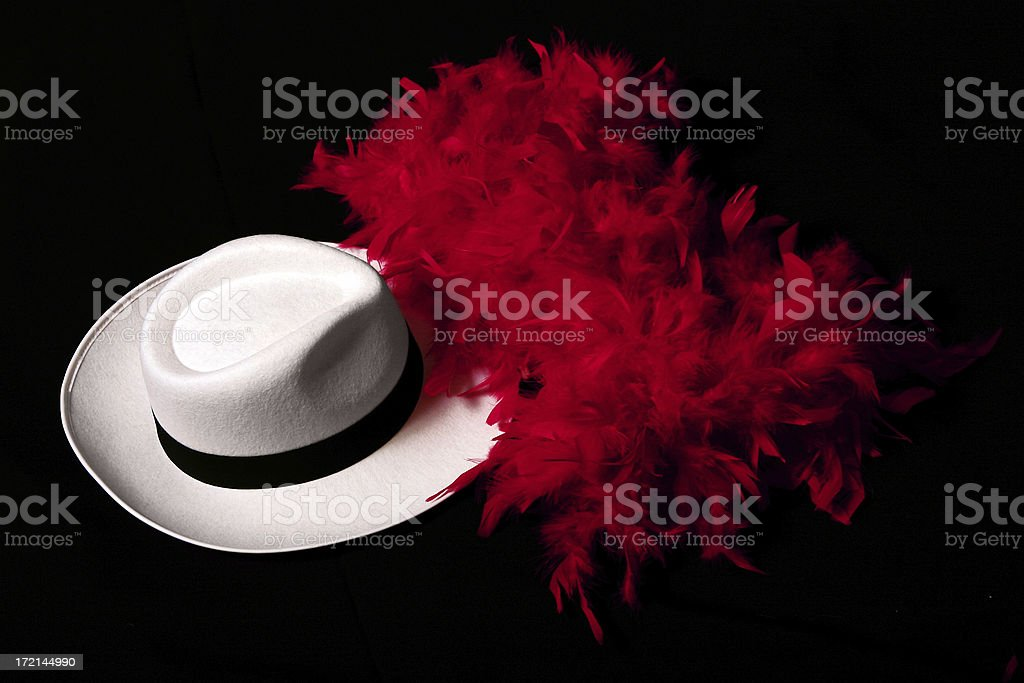 Fedora and scarf royalty-free stock photo