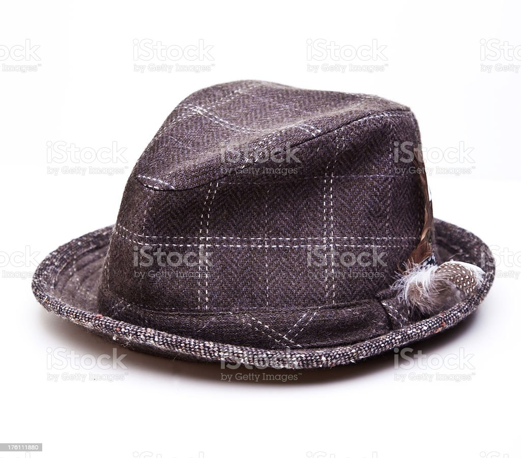 Fedora Hat stock photo