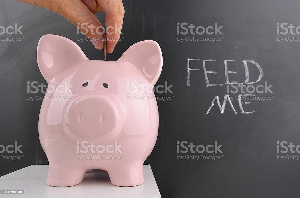 Feed Me stock photo
