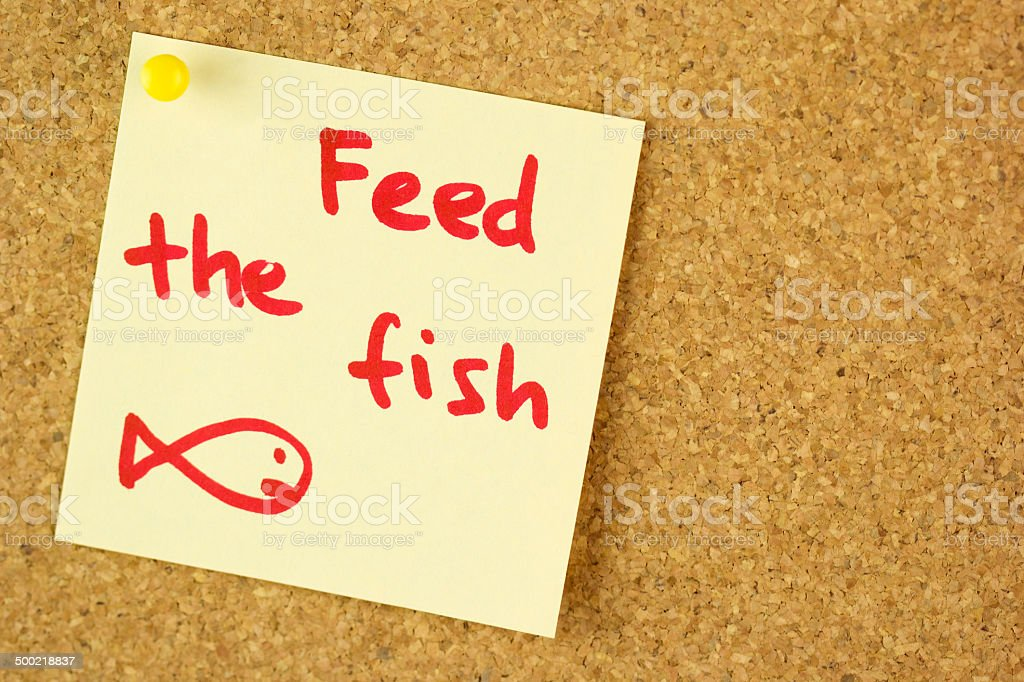 Feed the fish remind sticker on cork stock photo