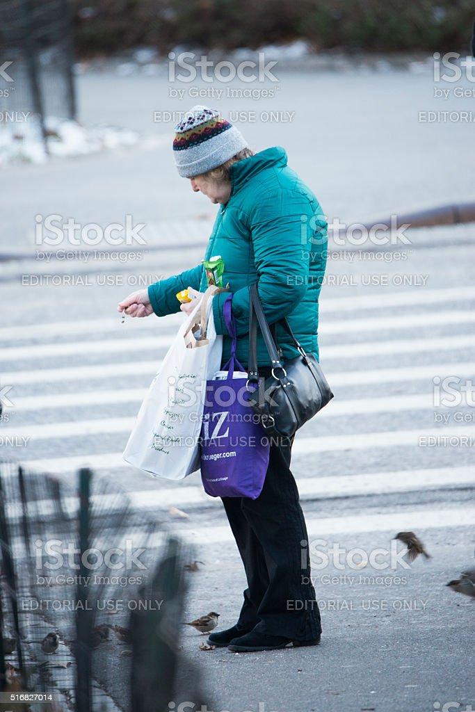 Feeding birds stock photo