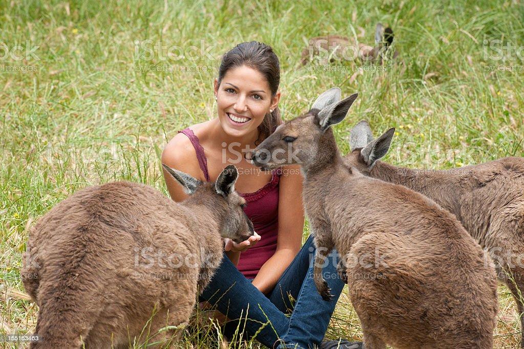 Feeding Kangaroos in the Wild (XXXL) royalty-free stock photo