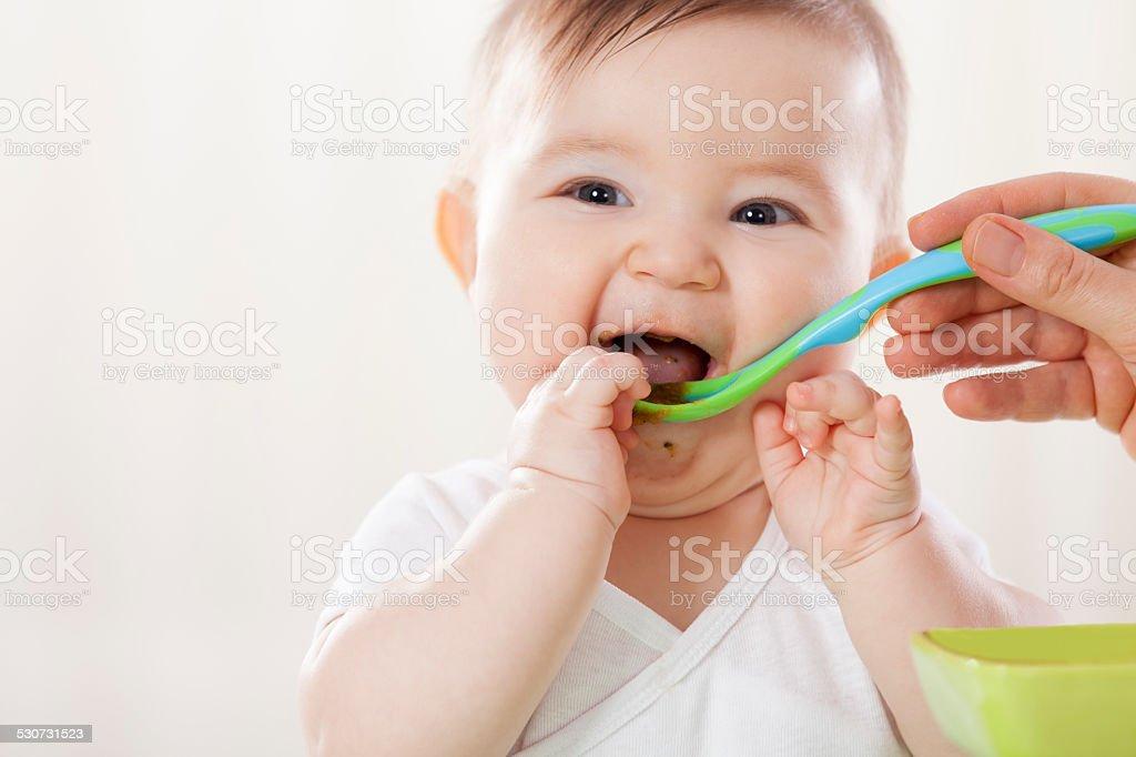 Feeding stock photo