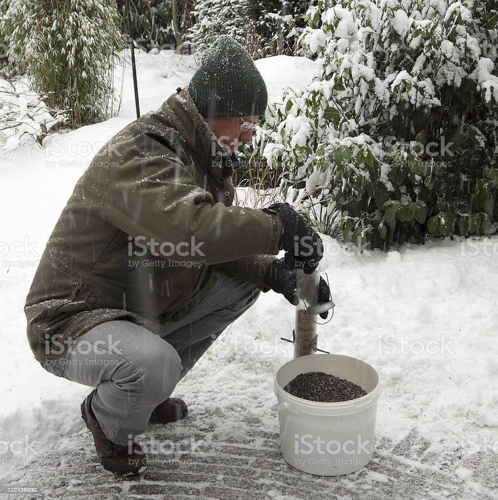 Feeding the birds in winter stock photo