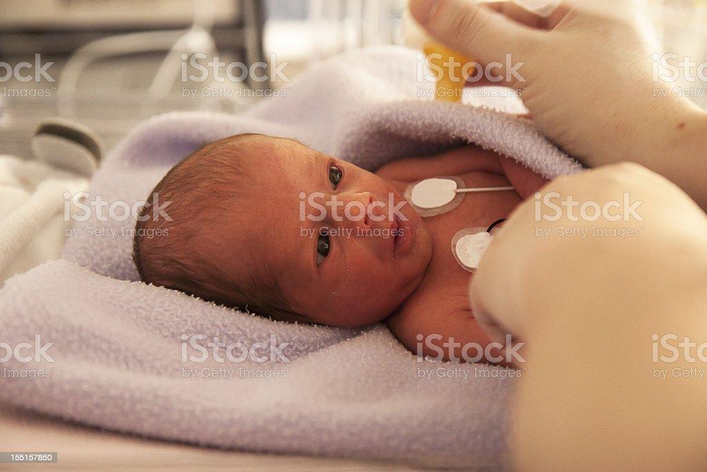 Feeding Time for a Newborn Preemie royalty-free stock photo