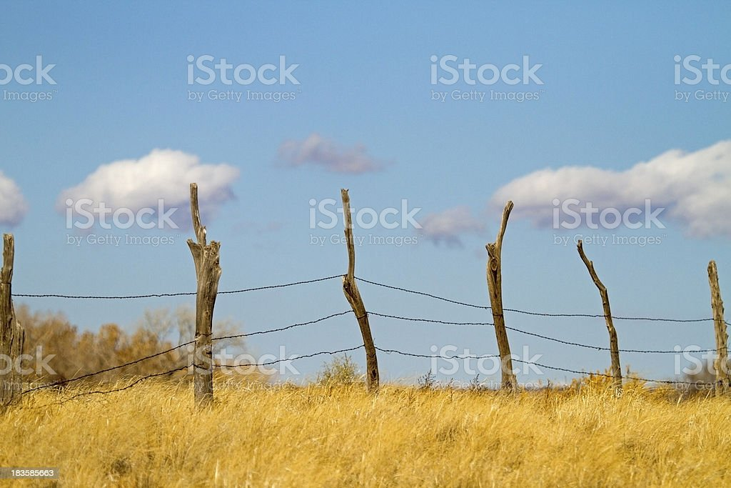 Feeling fenced in? royalty-free stock photo