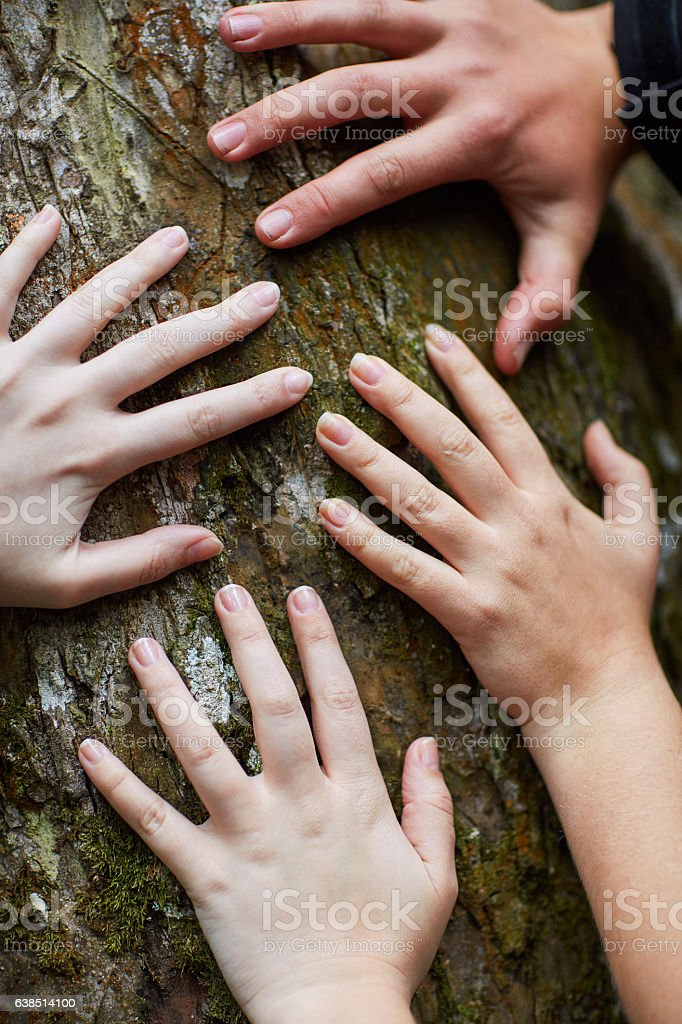 Feeling life beneath their fingers stock photo
