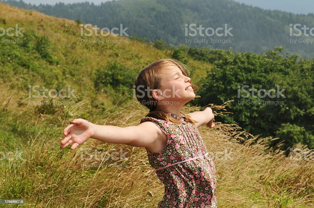 Feeling the Wind royalty-free stock photo