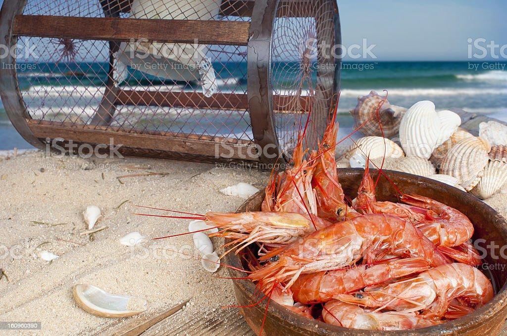 Feesh prawns on the beach royalty-free stock photo