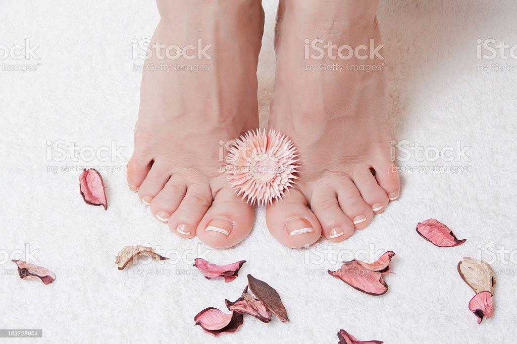 Füße und Blütenblättern Lizenzfreies stock-foto