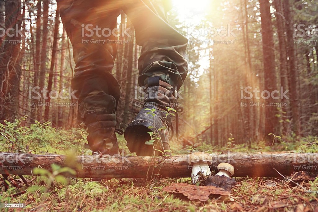 feet in shoes autumn forest hike stock photo