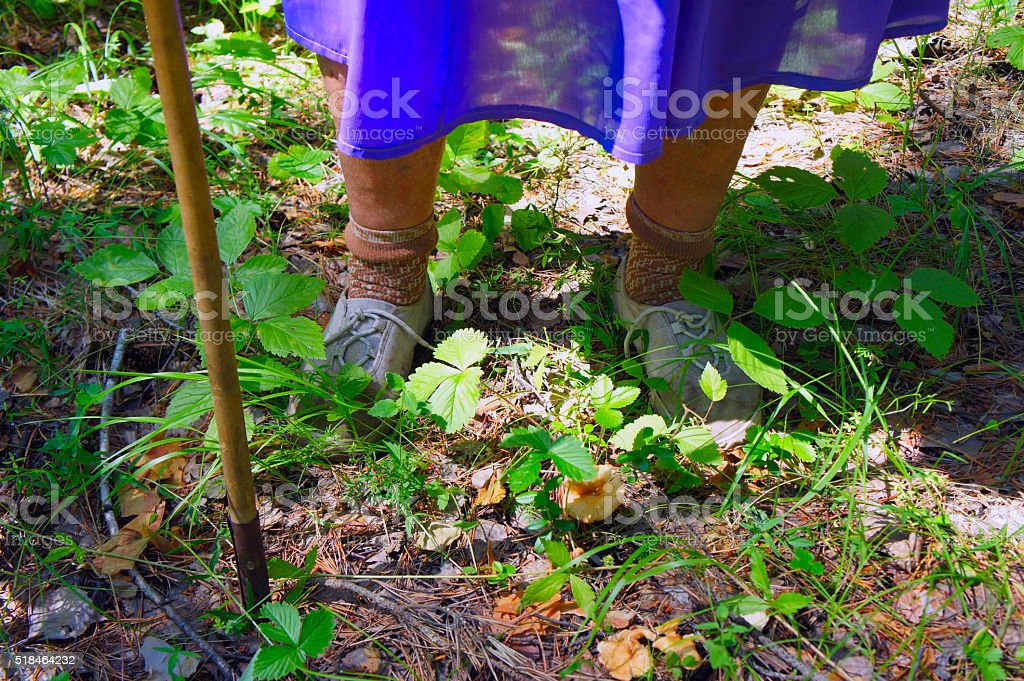 feet of elderly woman with his crutch against a grass stock photo
