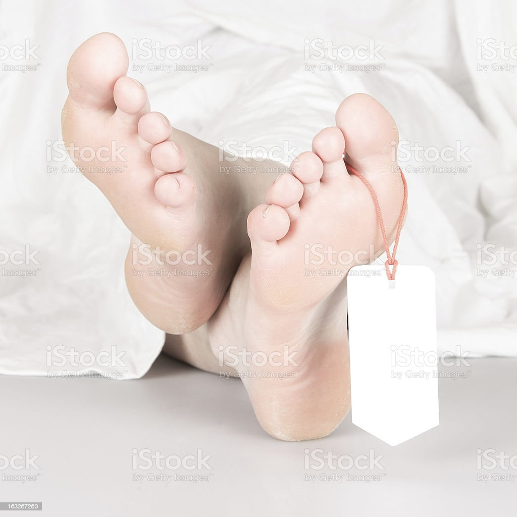 Feet with toe-tag under white sheet stock photo