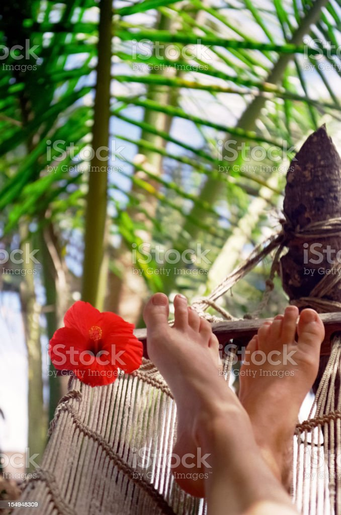 Feets in a hammock stock photo