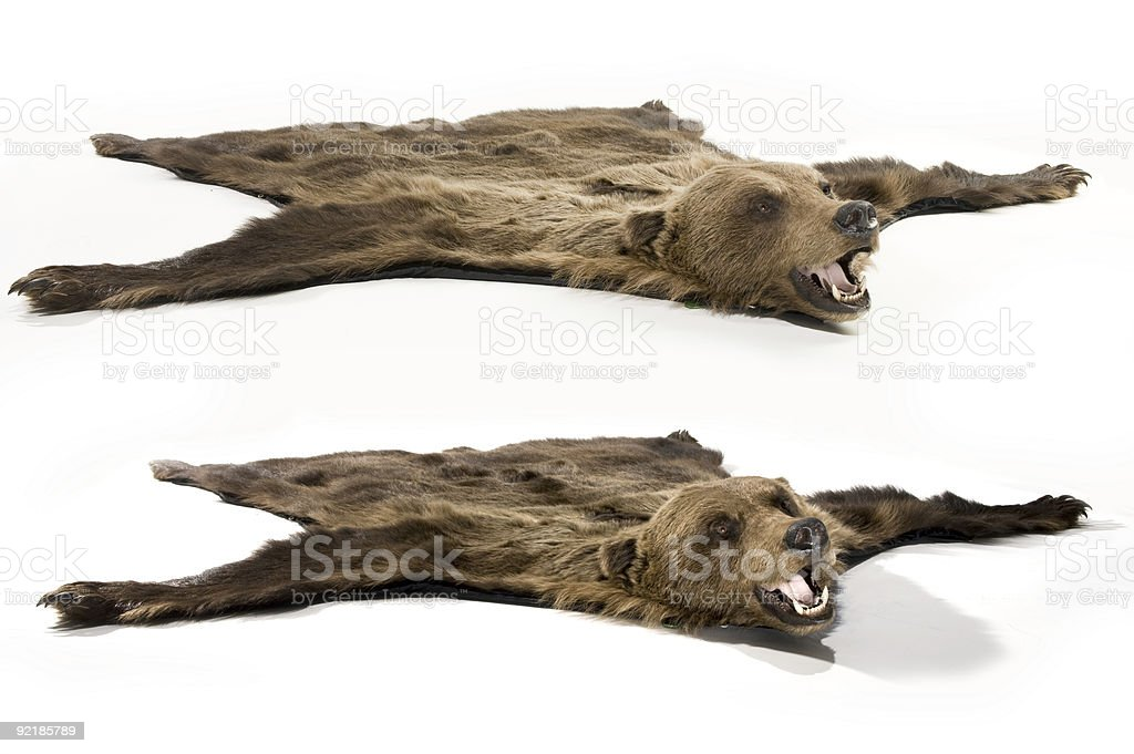 fell of bear stock photo