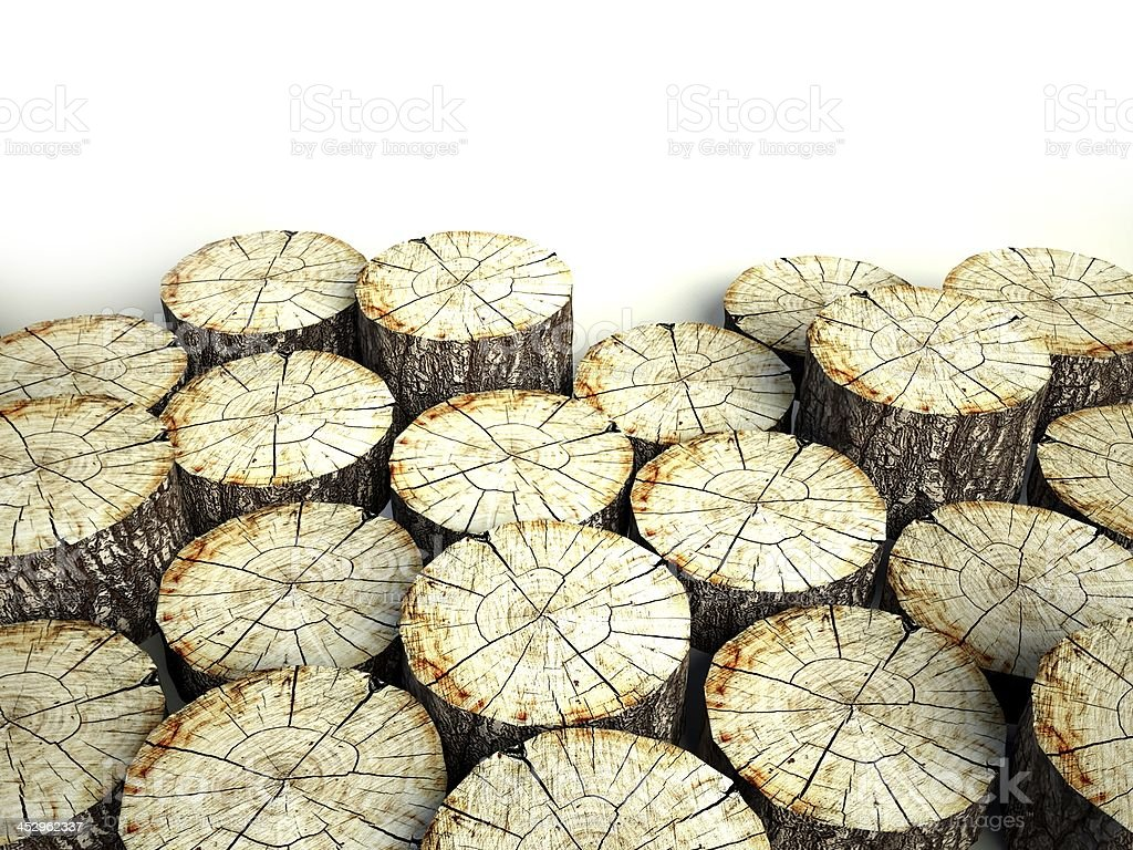 Felled tree stumps, background and copyspace royalty-free stock photo
