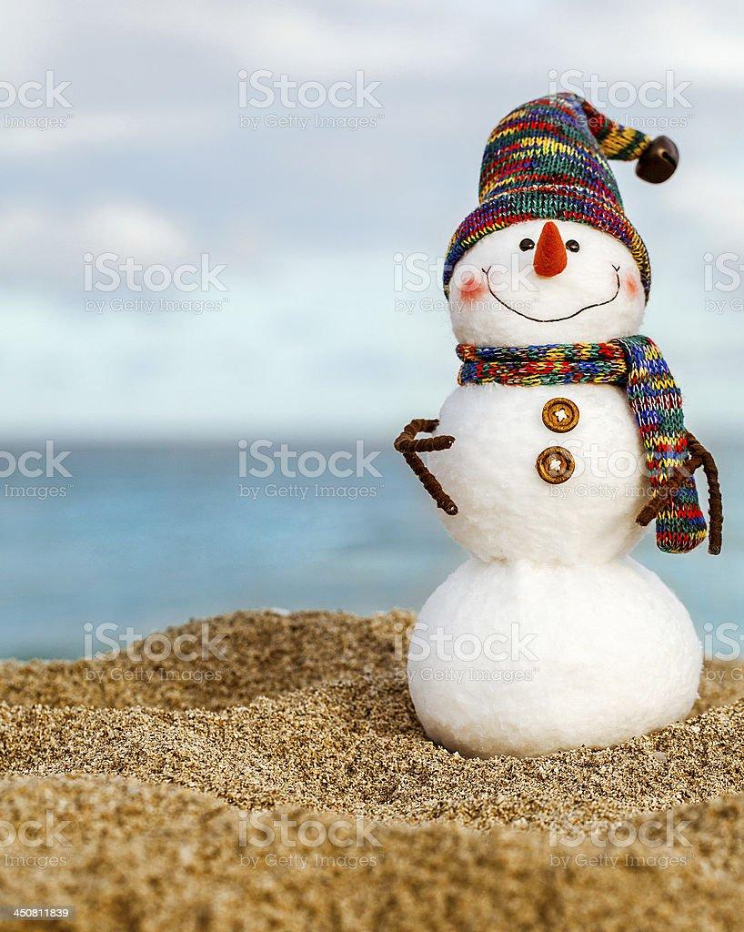 Felt with crochet snowman at the beach stock photo