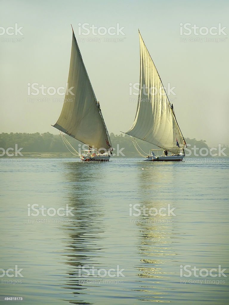 Felucca boats sailing on the Nile river royalty-free stock photo