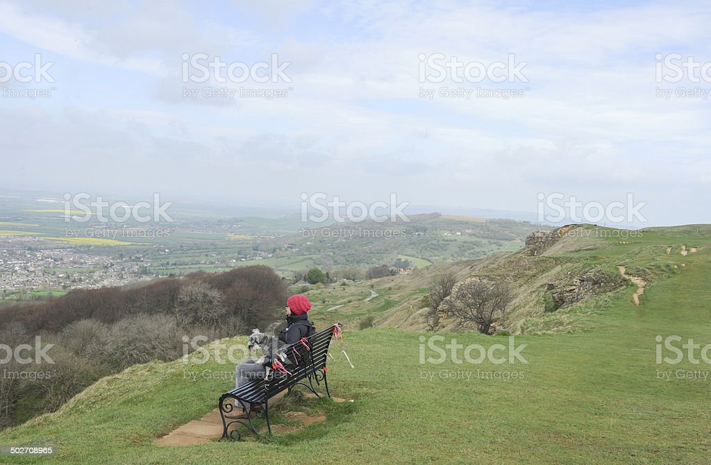 Female and Dog reflecting on a bench on Cleeve Common stock photo