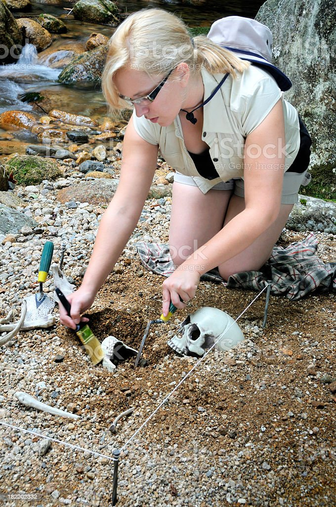 Female Archaeologist Hard at Work royalty-free stock photo