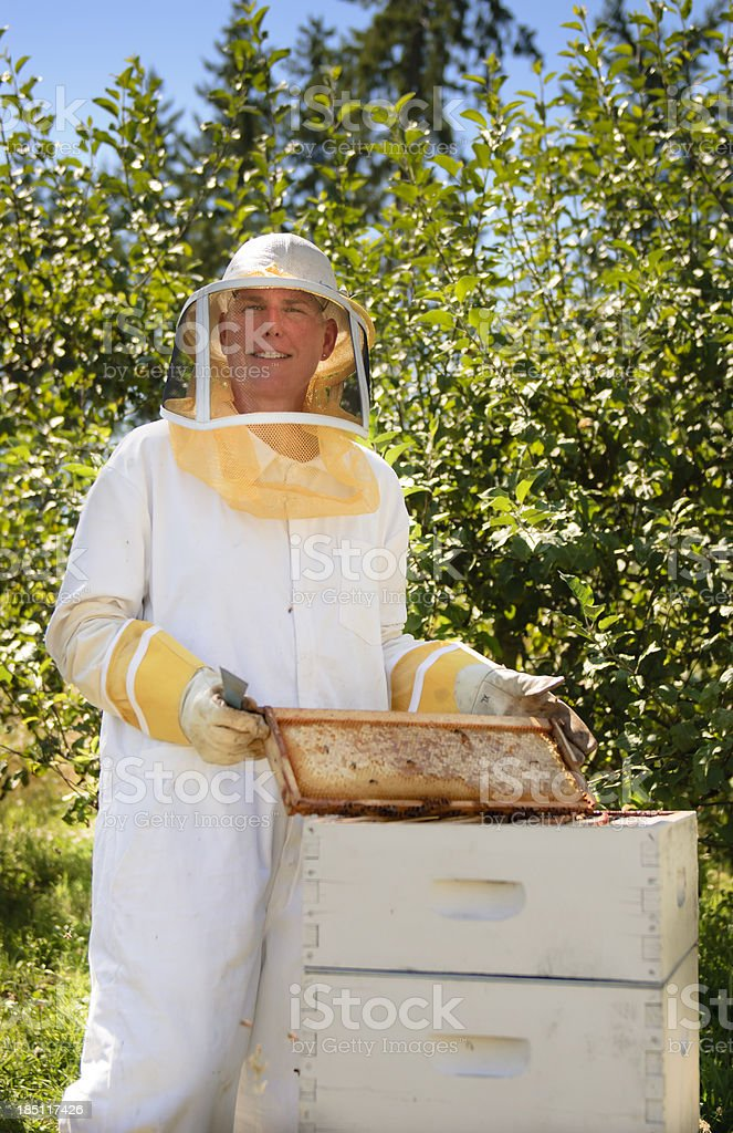 Female Beekeeper with Hive royalty-free stock photo