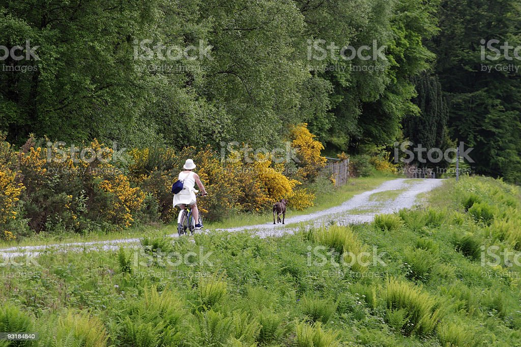 Female bicyclist royalty-free stock photo