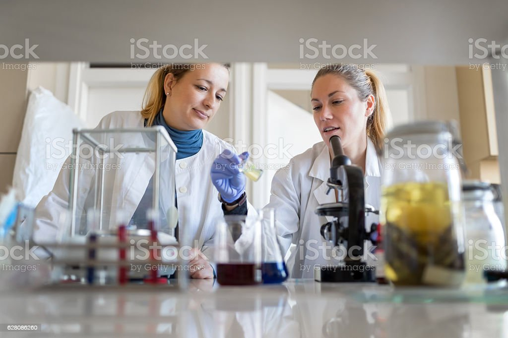 Female biologists looking at specimen stock photo