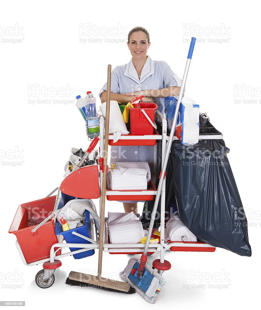 Female Cleaner With Cleaning Equipment stock photo
