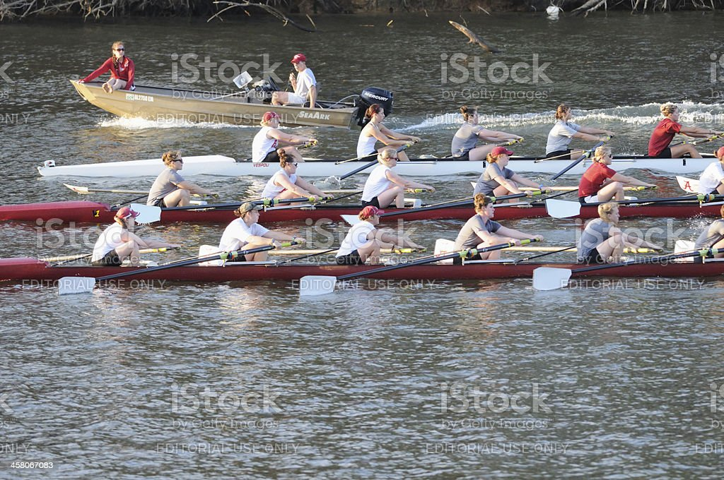 Female crew team practicing at sunset royalty-free stock photo