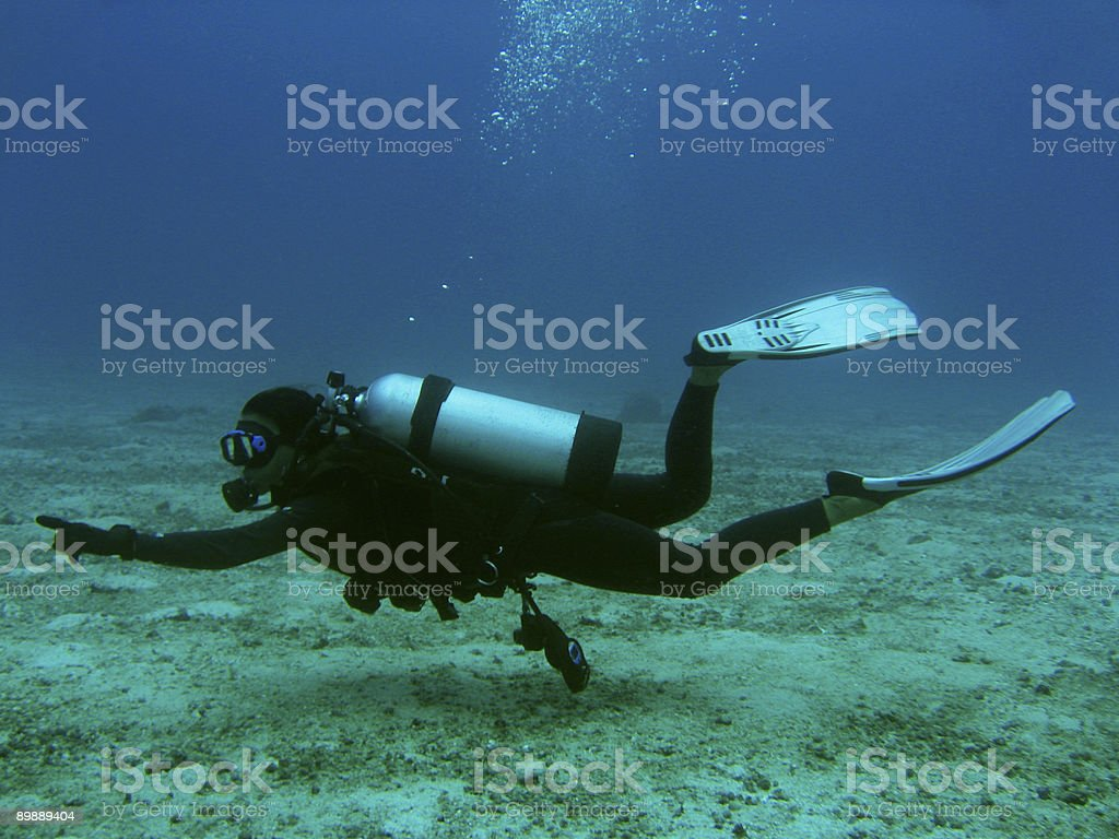 female dive master pointing  underwater stock photo