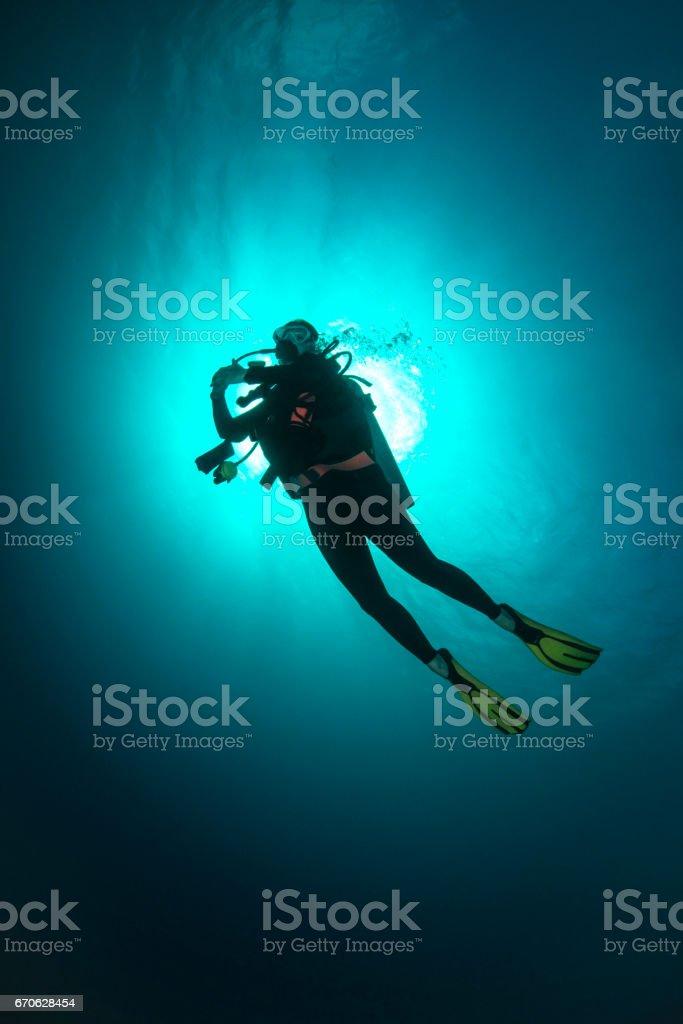 Female Diver - Palau, Micronesia stock photo