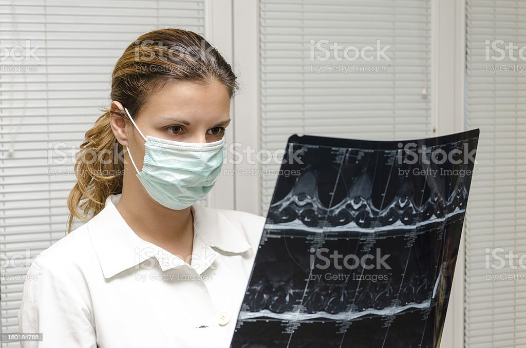 Female doctor checking an MR royalty-free stock photo