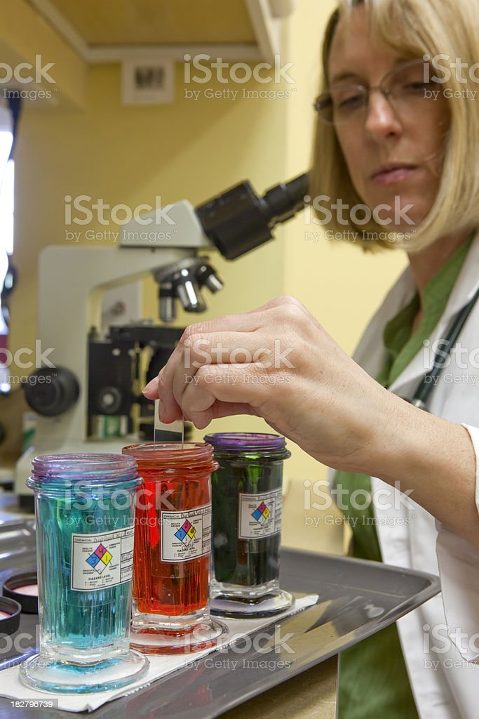 Female Doctor Prepares Sample for Use with Microscope royalty-free stock photo