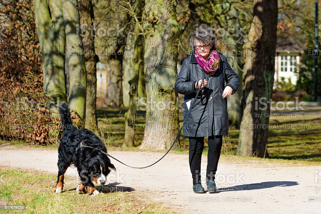 Female dog handler stock photo